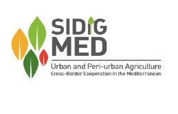 Urban and Periurban Agriculture and Social Inclusion